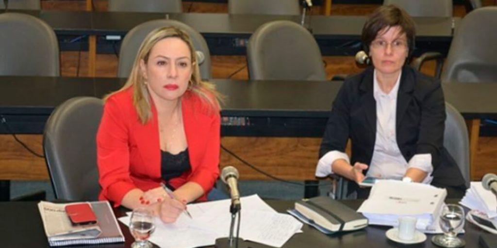 Foram ouvidos a promotora de Justiça de Cavalcante, Úrsula Catarina Fernandes Silva Pinto, o juiz da comarca de Cavalcante, Lucas Mendonça Lagares; e o prefeito de Cavalcante João Pereira da Silva Neto.