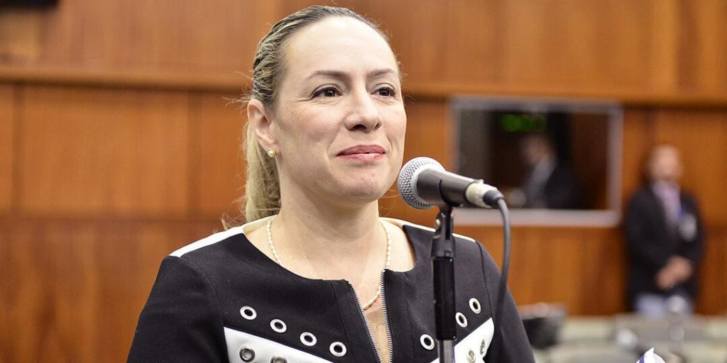 A deputada Delegada Adriana Accorsi apresentou projeto de lei que institui a política estadual de estímulo à utilização de energia renovável, sustentável e limpa no Estado de Goiás.