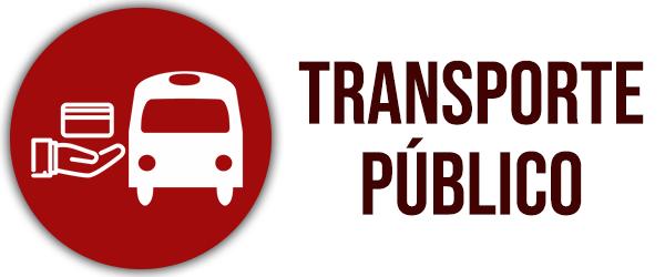 Transporte público em Goiás é prioridade para a Delegada Adriana Accorsi